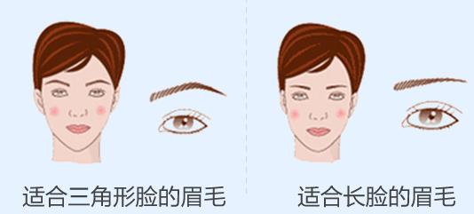 不同脸型的眉毛形状二